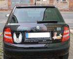 Werbung_Auto_0147.jpg