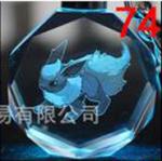 Pokemon Anhänger Nummer 074
