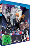 Bleach Movie 2 - The DiamondDust Rebellion