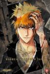 Bleach - Wandkalender 2015